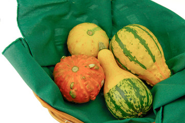 Basket of decorative squash