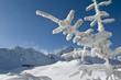winterliche Gebirgsszene in den Südkarpaten