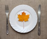 Leaf on the plate