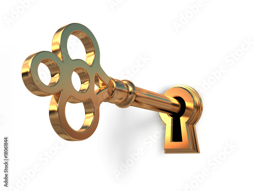 Foto op Aluminium Retro Golden key in keyhole