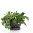 Herb Leaf Selection