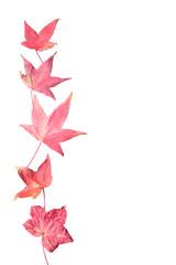 Fond de feuilles rouges - papier à lettre