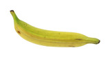 Plantain cooking banana poster