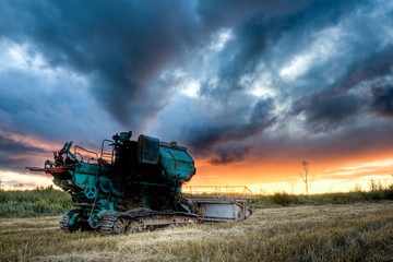 green combine under sunset
