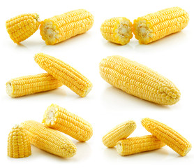 Set of Ripe Yellow Corn Isolated on White