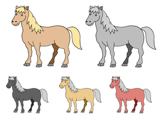 five colored horse