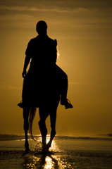 The horse rider on the beach