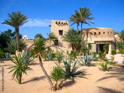 Crocodale farm on Djerba (Tunisia) - 18108631