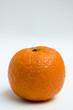 mandarina, clementina