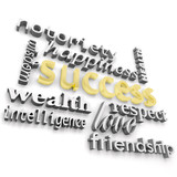 Success and its Many Meanings poster