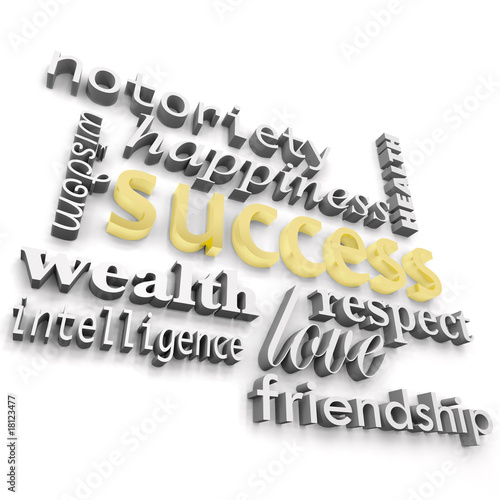 Success and its Many Meanings