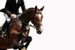 Fototapeten,pferd,reitend,reitsport,springschrecken