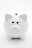 Cute white piggy bank poster
