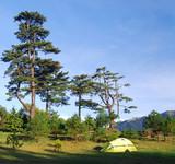Beautiful campsite poster