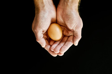 Cupped hands holding egg