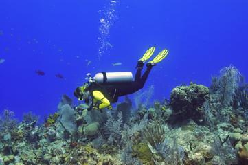 Woman exploring a reef