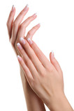 Fototapety Beauty elegant female hands with french manicure