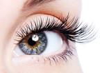 Beauty female eye with curl long false eyelashes - 18189649