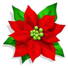 Stella di Natale-Christmas Poinsettia-Fleur Noël