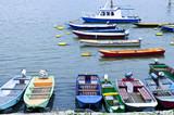 River boats on Danube poster