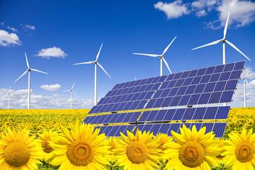 Wind turbines and solar panels on sunflowers field