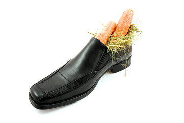 Big shoe with carrots for Sinterklaas over white