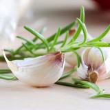 Fototapety garlic - frischer knoblauch und rosmarin