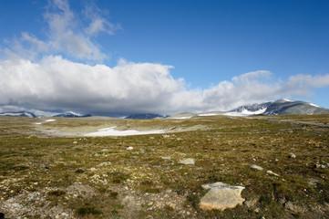 Nationalpark Dovrefjell