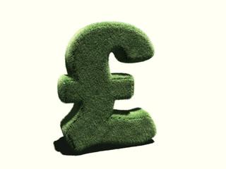 Livre Sterling en herbe