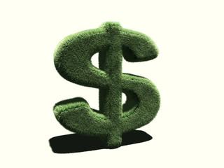 Sigle Dollar en herbe