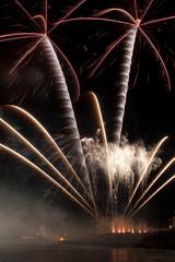 Feuerwerk als Palmen