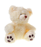 Fluffy teddy bear isolated on white background poster