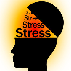 stress in head
