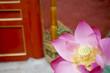 pink lotus flower in Forbidden City in Beijing