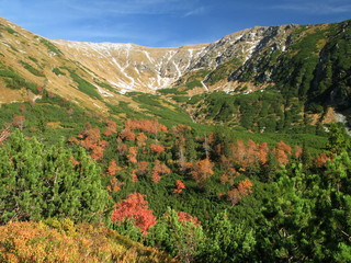 Tatry - upper part of Jamnicka valley