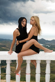 Two sexy young women sitting on a white handrail poster
