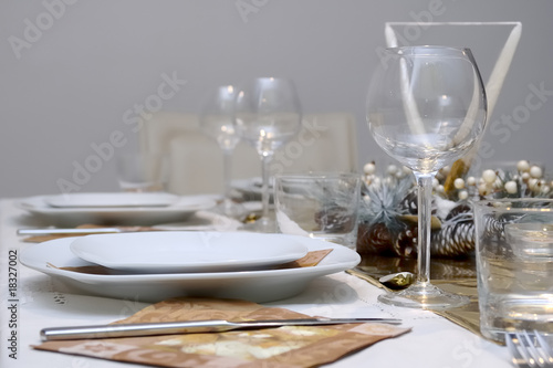 Shiny table setting