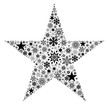 X-Mas Star Black & White
