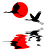 illustration of the cranes in sky on background red sun