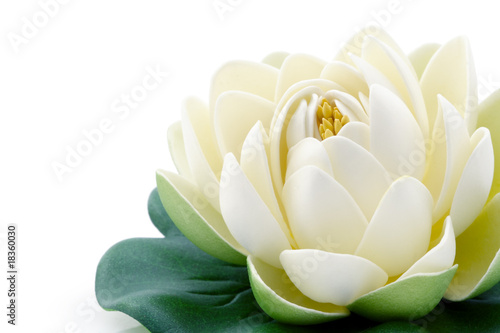 Fotobehang Lotusbloem Fleur de lotus