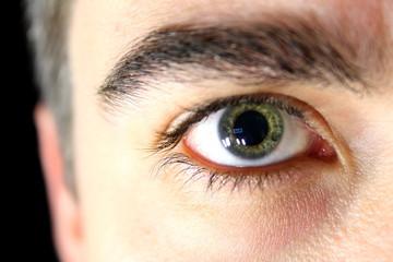 Auge rechts frontal