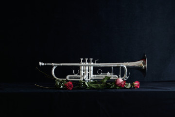 trumpet on black background with dried roses