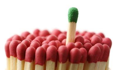 Green matchstick among red ones, out of the crowd