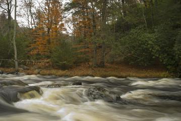 Flowing Bushkill Creek