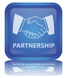 """ Partnership "" Button (square - blue - vector - reflection)"