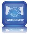 """ Partnership "" Button (square - blue - vector - reflection)"
