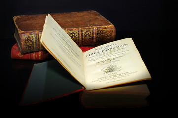 spot light on a  rhymes dictionary, dictionnaire des rimes