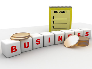budget and business