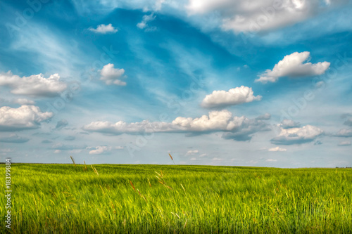 canvas print picture Landscape