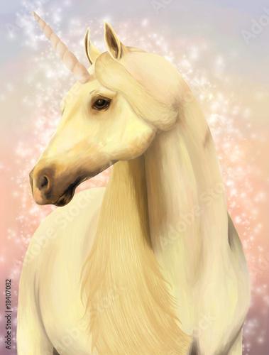 Poster Pony Unicorn.